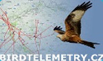 birdtelemetry birdwatching 2018