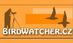 birdwatcher biřrdwatching2018