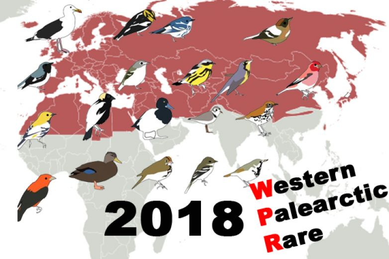 RARITY Western Palearctic 2018