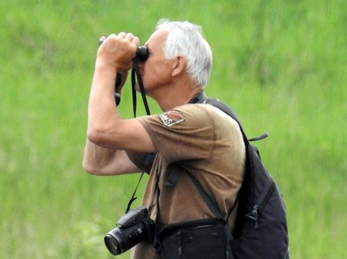 Birdwatching na internetu